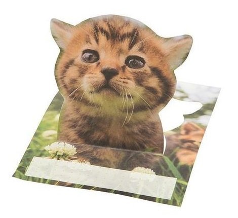 iwago-cat-pickoutstickynote