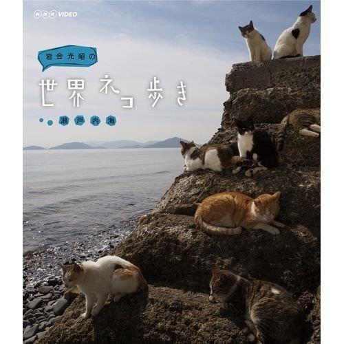 iwago_sekai_neko_aruki